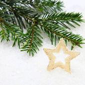 Gouden kerstster — Stockfoto