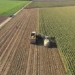 Aerial view of a farmer harvesting silage — Stock Video
