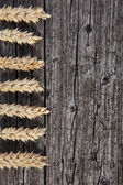 Ears of wheat on old stained wood — Stock Photo