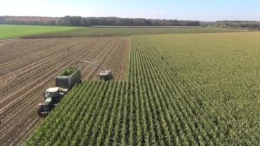 Aerial view of a farmer harvesting — Stock Video #22618731