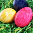 Easter painted eggs in artificial grass — Стоковая фотография