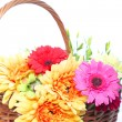 Basketful of colourful flowers — Foto de Stock
