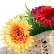 Colourful Gerbera daisies in a basket — Stock Photo
