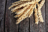 Bunch of golden ears of wheat on wood — Stock Photo