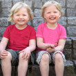 Laughing cute identical twins — Stock fotografie