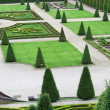 Stock Photo: Elaborate formal garden