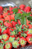 Close-up of strawberries — Stock Photo
