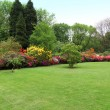 Beautiful manicured lawn in a summer garden — 图库照片