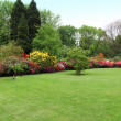 Beautiful manicured lawn in a summer garden — Стоковая фотография