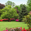 Stock Photo: Colourful spring garden