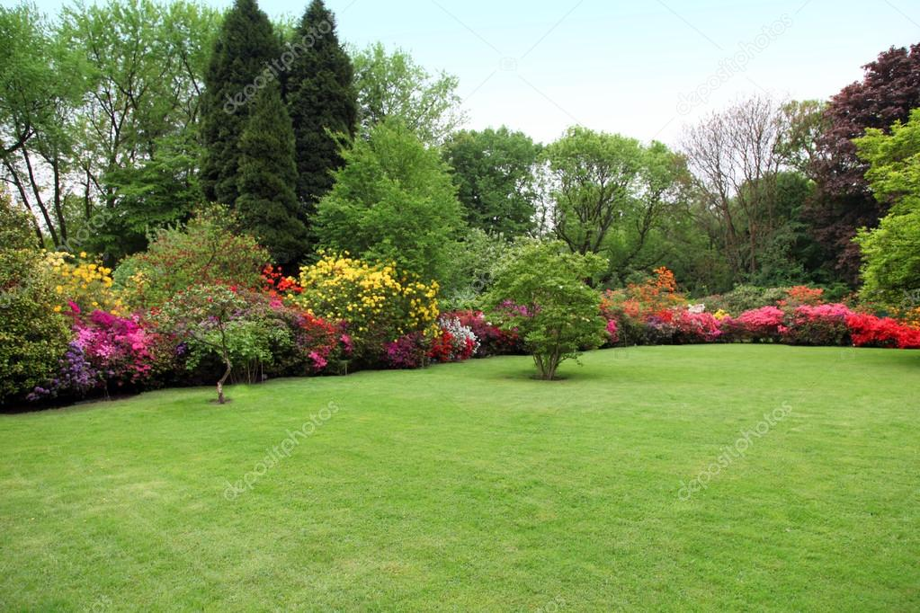 fotos de um jardim lindo : fotos de um jardim lindo:Lindo gramado manicured em um jardim de verão — Fotografias de