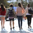Stock Photo: Rear view of four students walking away