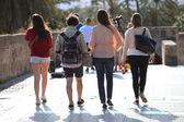 Achteraanzicht van vier studenten weglopen — Stockfoto