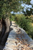 Rustic old stone wall — Stockfoto