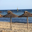 Thatched umbrellas on a tropical beach — Foto Stock