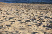 Beach sand texture — Stock Photo