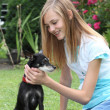 Foto Stock: Teenager caressing her miniature pinscher