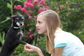 Young girl with her little dog — Stock Photo