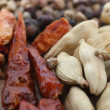 Dried chilli pepper and cardamom — Stockfoto