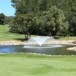 Water hazard on a golf course — Stock Photo