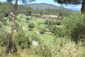View of a rural golf course — Stock Photo