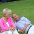 Senior couple relaxing on a rug on the grass — Stock Photo #32910905