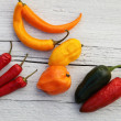 Colourful capsicum peppers — Stock Photo