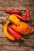 Variety of fresh peppers or capsicum — Stock Photo