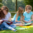 Teenage girls studying together in the park — Stockfoto