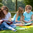 Teenage girls studying together in the park — Stok fotoğraf