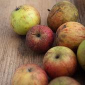 čerstvá červená jablka — Stock fotografie