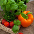 Fresh basil, peppers, tomato and parsley — Stock Photo