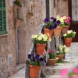 Row of flowerpots lining a street — Stock Photo