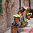 Stock Photo: Row of flowerpots lining a street