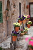 Row of flowerpots lining a street — Foto Stock