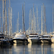Foto Stock: Pleasure boats and yachts in marina