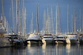 Pleasure boats and yachts in a marina — Stok fotoğraf