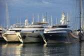 Luxury cabin cruisers moored in a harbour — 图库照片
