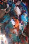 鮮やかな色の装飾的な鳥の羽 — ストック写真