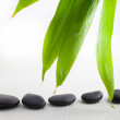 Spa massage stones with fresh bamboo leaves — Stock Photo #38380003