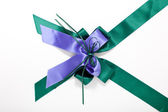 Ornamental blue and green bow — Stock fotografie
