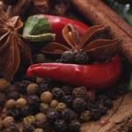 Aroma spice — Stock Photo #14172318