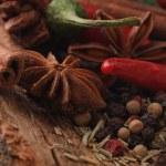 Aroma spice — Stock Photo #14172320