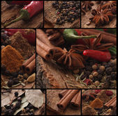 Aroma of spices — Stock Photo