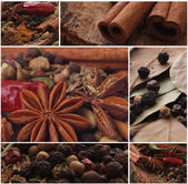 Fragrant spices which will approach absolutely to any dish — Stock Photo