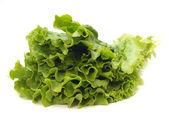 Fresh salad — Zdjęcie stockowe