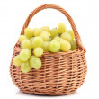 Grape fruit — Stock Photo #31748829