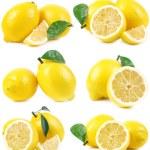 Fruit lemon — Stock Photo #39416869