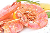 Fresh shrimps — Stock Photo