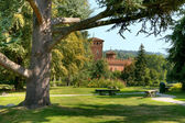 Valentino Park and Medieval Castle. — Stock Photo